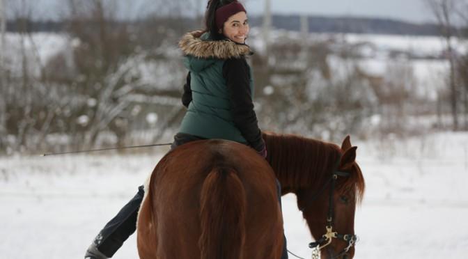 Заездка лошади