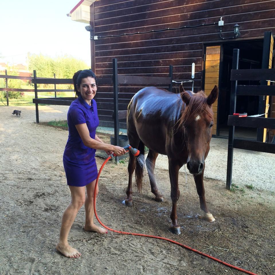 Удобно мыть лошадь из шланга и не беспокоиться об отводе воды
