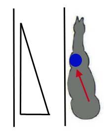 Смещение веса по диагонали Синий круг - центр тяжести