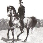 Густав Штайнбрехт