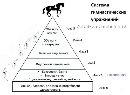 Пирамида гимнастики