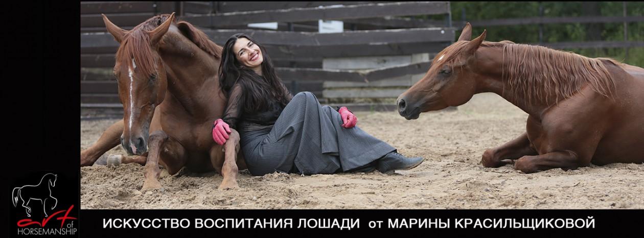 http://artofhorsemanship.ru