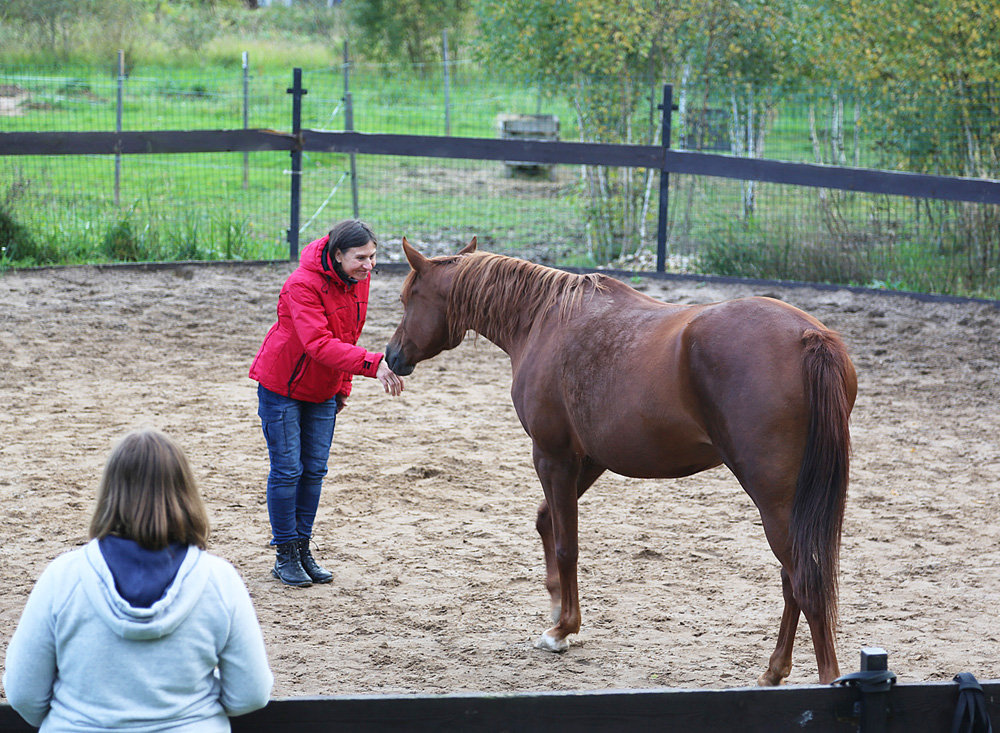 Вита знает, что приветствие, важный элемент взаимодействия с лошадью!